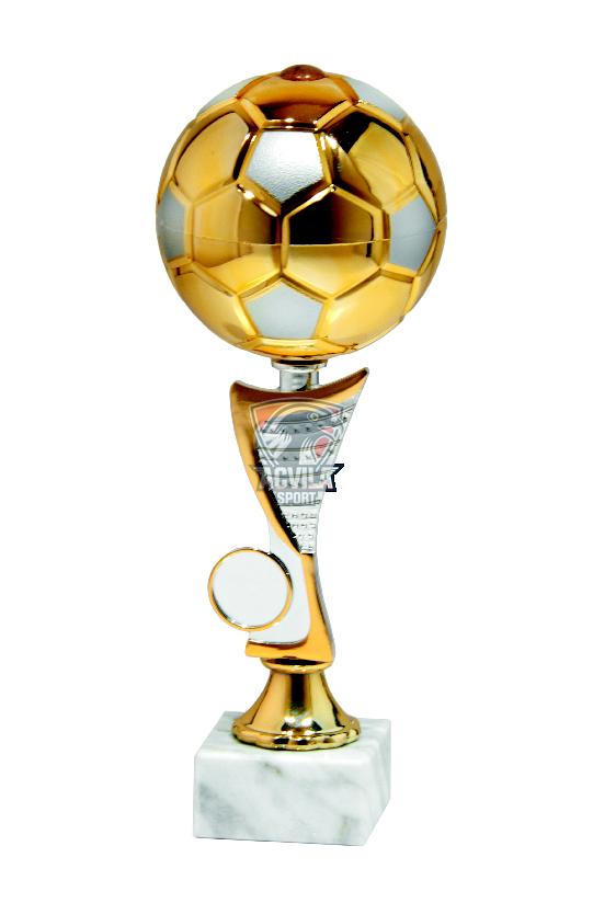 photo Cupa Fotbal 9757C