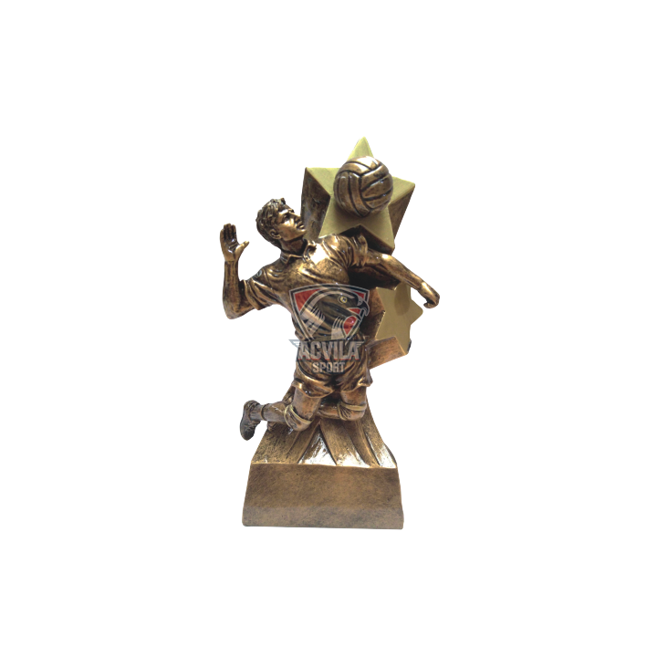 Statuieta Volei XCE33597Y