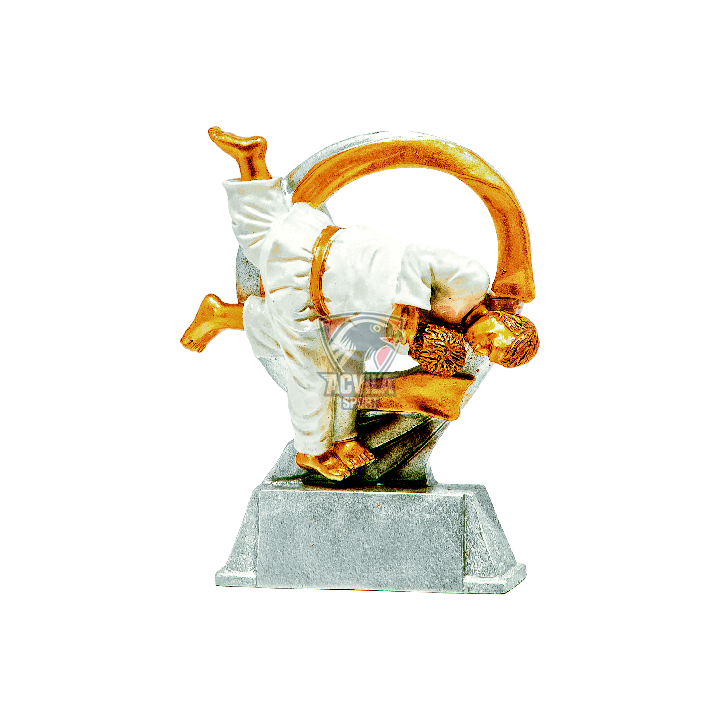 Statuieta Judo RF39332