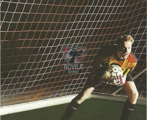 photo 0 Plasa porti fotbal VIXEN 7,5mx2,5m (4mm)